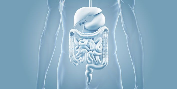 Tratamiento del Colon Irritable