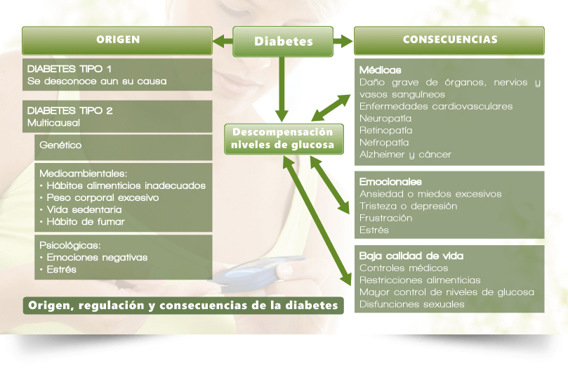 manejo de diabetes tipo 1 folleto en pdf