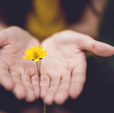 Pedir o solicitar perdón ¿Una cualidad innata o una habilidad que se aprende?