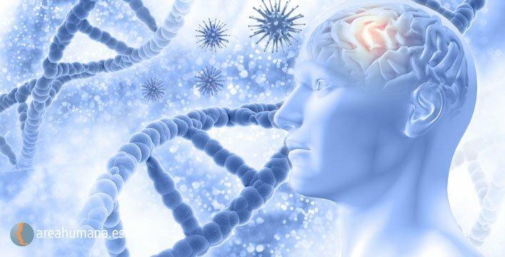 Biología y Psicología en el síndrome del intestino irritable