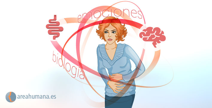 Un enfoque integral en el tratamiento del síndrome del intestino irritable