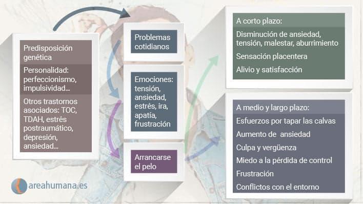 Factores que explican la tricotilomanía